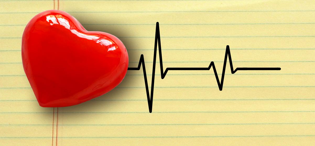 Un cuore allenato non sempre è un cuore sano: lo rivela l'ecocardiografia