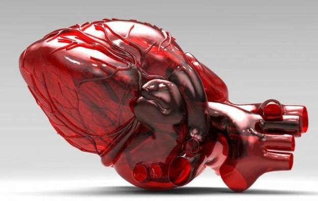 Il cuore in 3D è realtà