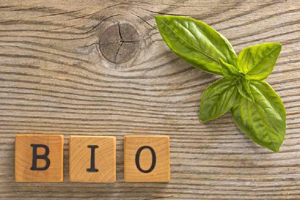 Il Biologico: futuro alimentare sano e sostenibile