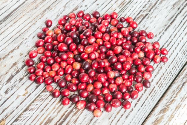 Mirtillo rosso americano antibatterico, disinfettante, antiossidante