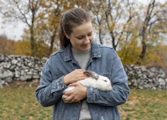 4 validi motivi per sterilizzare il coniglio