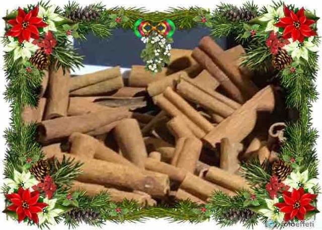 Cannella: spezia natalizia dalle innumerevoli proprietà