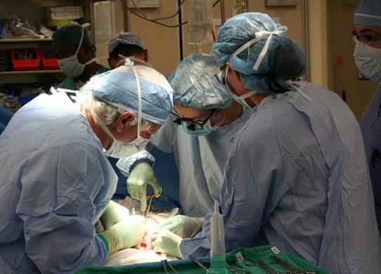 I trapianti osteoarticolari per lesioni della cartilagine
