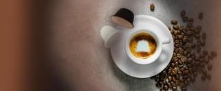 Il caffè fa bene o fa male Come va lavorato il caffè per diventare prodotto di qualità
