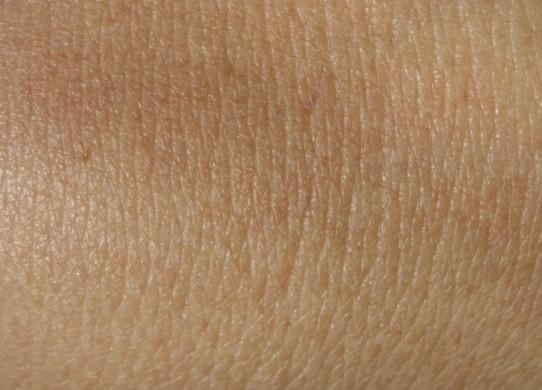 Anatomia della pelle: strati e ciclo vitale