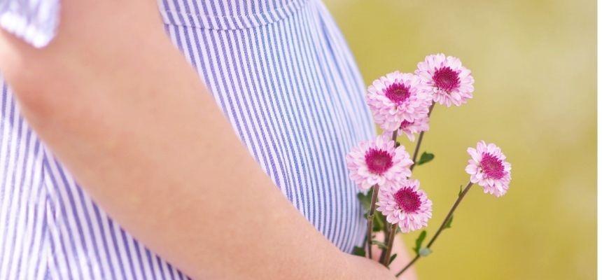 Secondo trimestre di gravidanza la simbiosi
