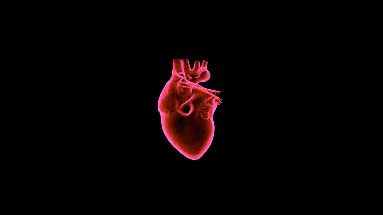 """Nuova tecnica per intervenire sul forame ovale pervio, il cosiddetto """"buco"""" al cuore"""