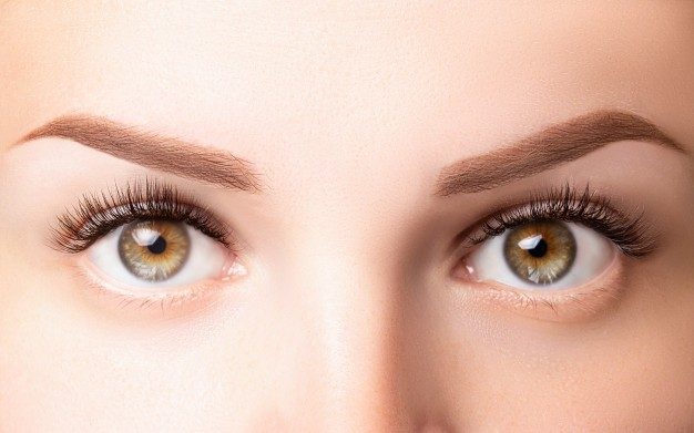 Occhi anaomia e fisiologia