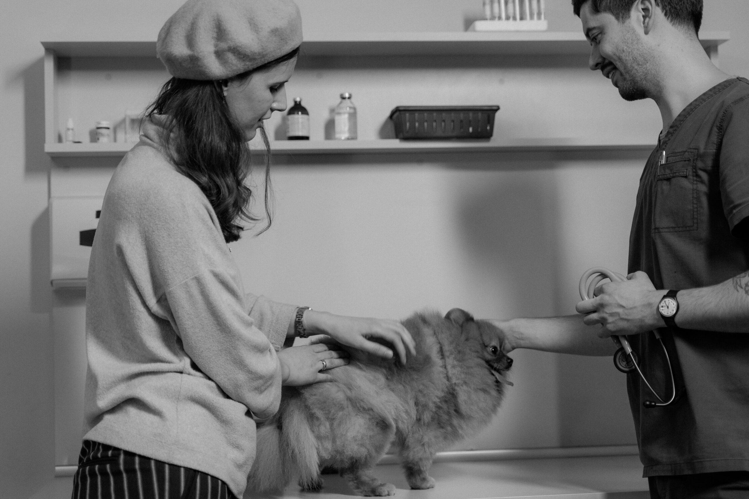 Omeopatia veterinaria: il cliente ha sempre ragione